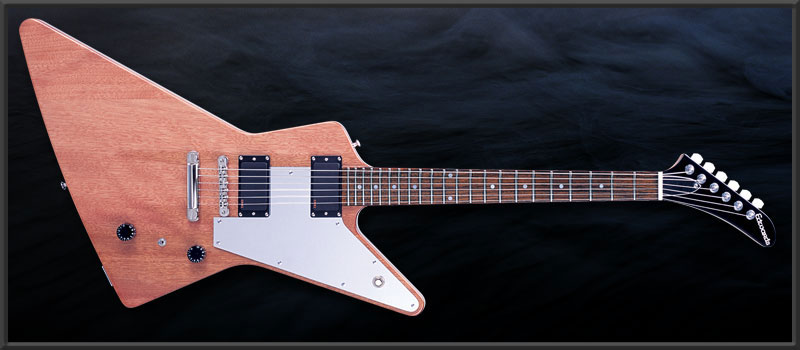 EDWARDS E-EX-138E Syu Custom