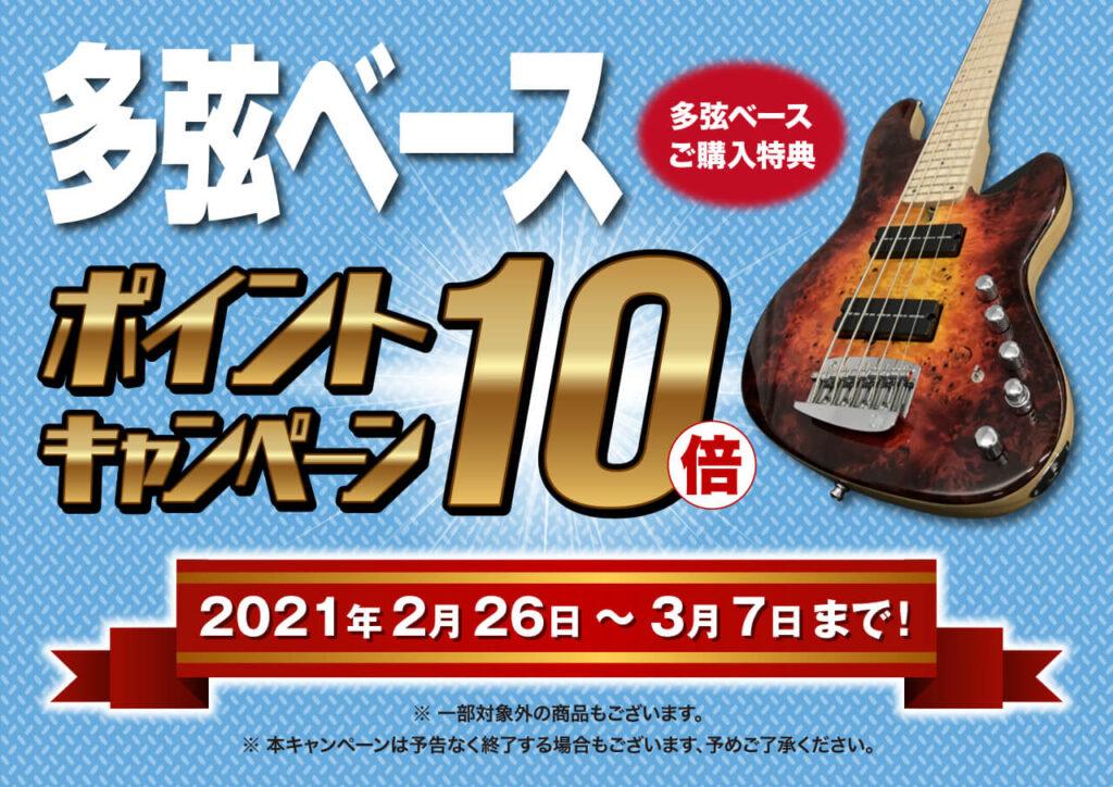 多弦ベースポイント10倍キャンペーン