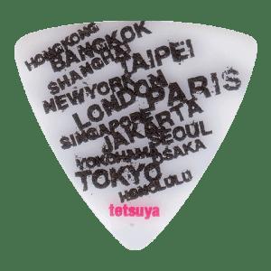 PA-LT10-20th W-TOUR WH