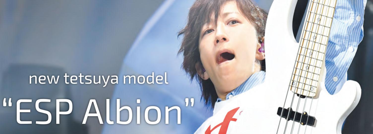 TETSUYA_Signature_Model_ESP_Albion